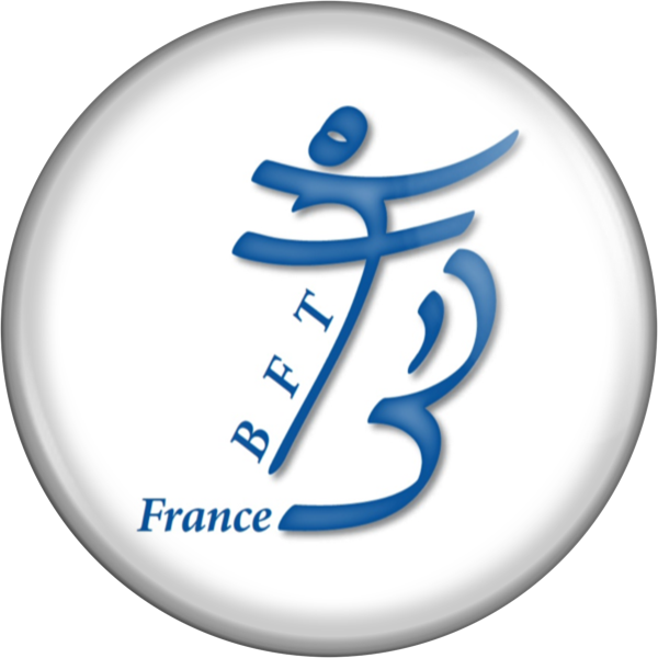 bft-france.eu favicon